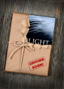 blackburn-mcbride-birdlight-book-launch-save-date-blog-5-20-2016