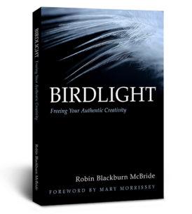 blackburn-mcbride-birdlight-book-bestseller-blog-6-3-2016