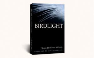 cover-robin-birdlight-book dream builder creativity